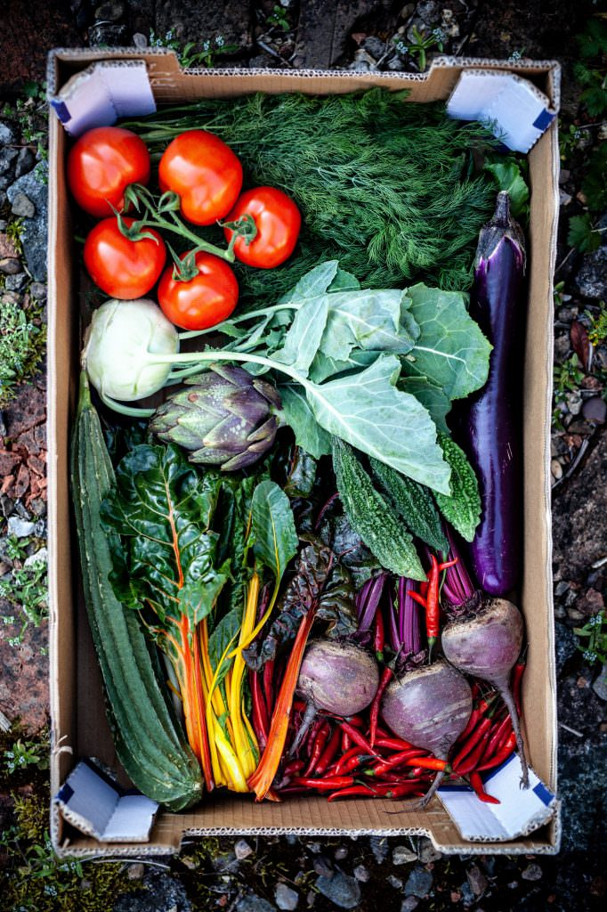 Vegetables from leicester market in a cardboard box