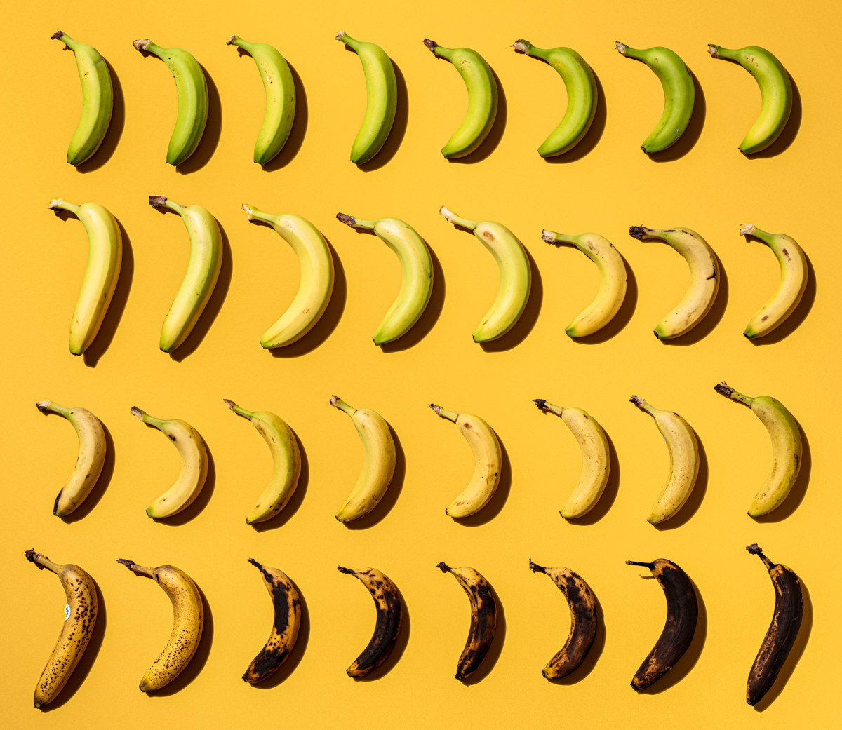 Banana ombre photograph showing every stage of banana ripeness in a chart