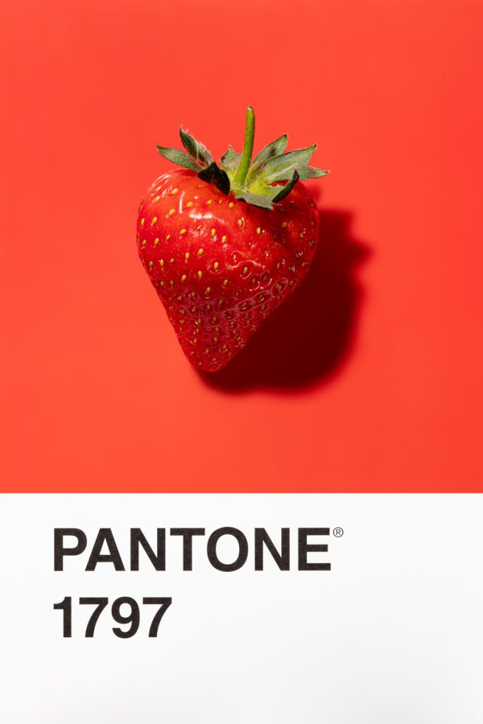 a perfect strawberry photograph on pantone 1797 card